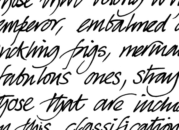 Fabulous Ones Handwriting Sample