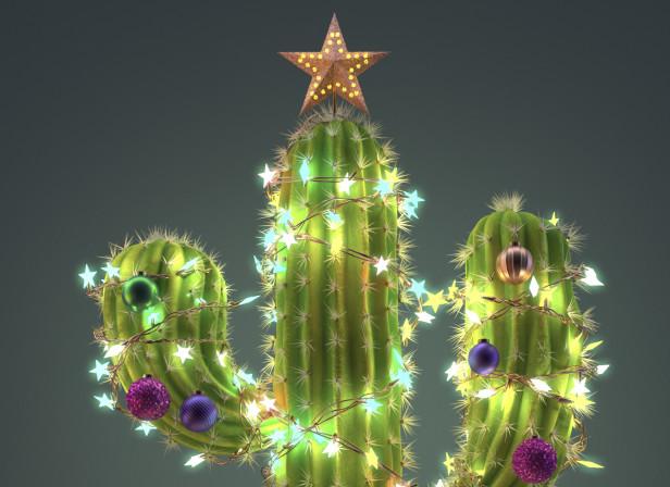 Fabulous mag xmas cactus.jpg