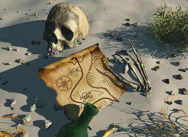 Pirate Book Cover