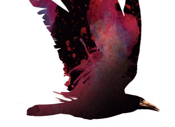 La Cite Des Oiseaux Cover