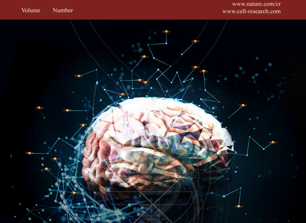Brain Retrotransposition - Cell magazine.jpg