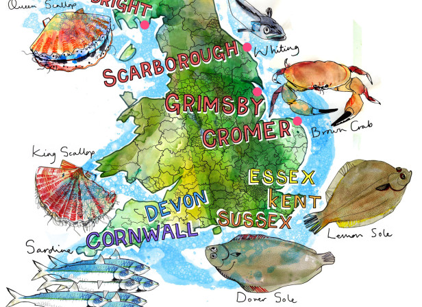 British Seafood Map / Sainsbury's Magazine