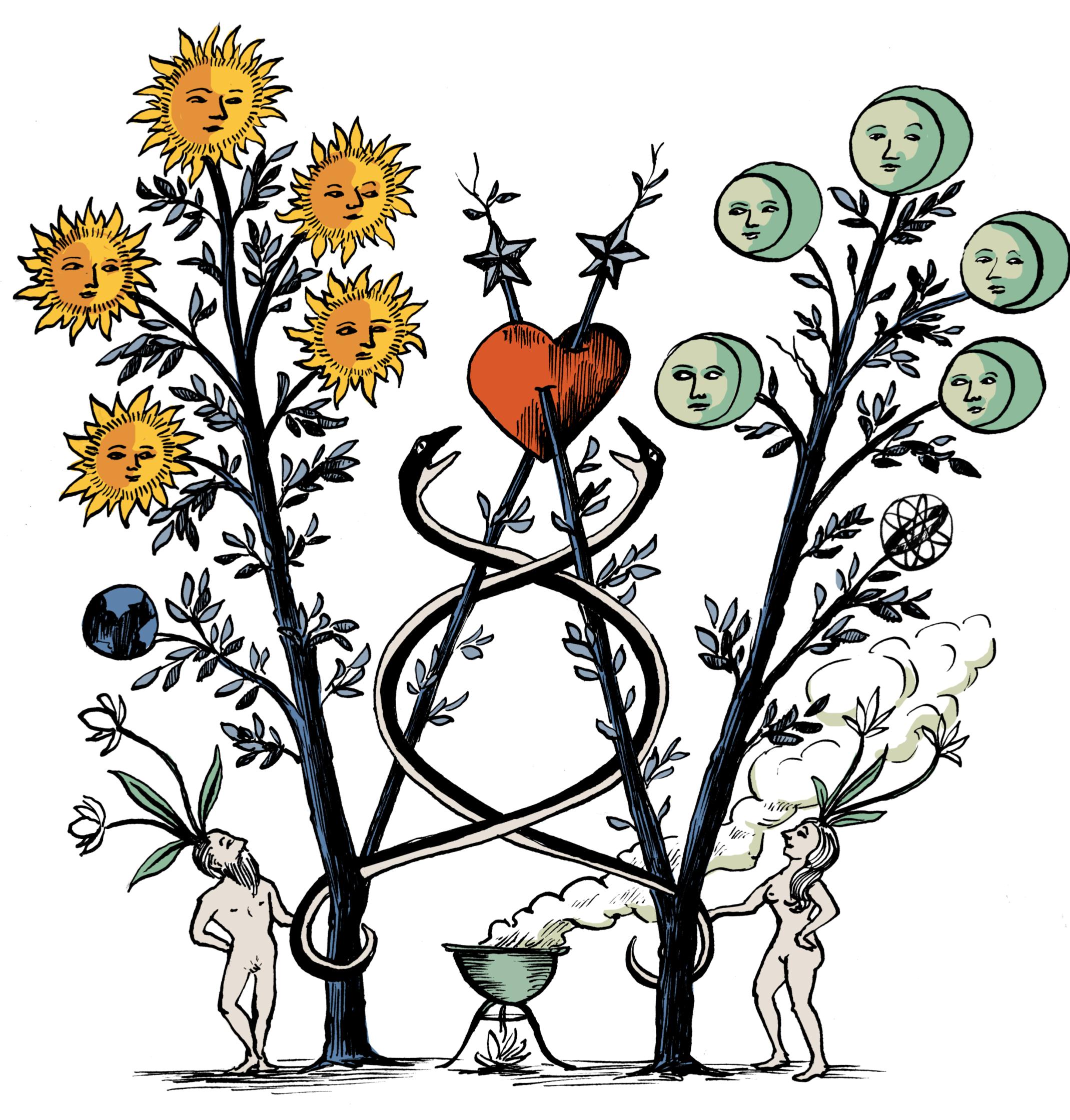 Penguin Curiocity Occult Letter W