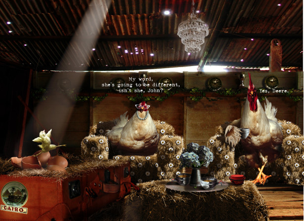 Carla Chicken Children's Book