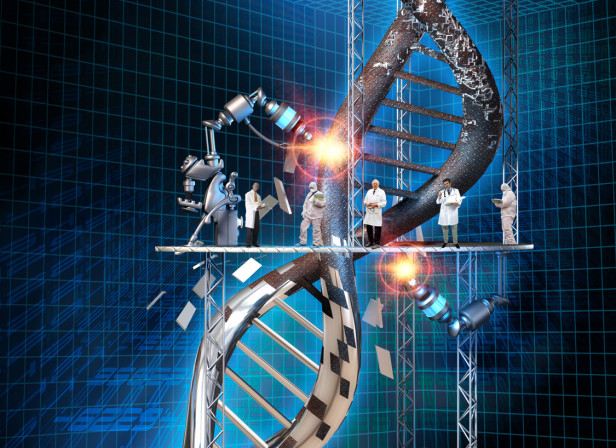 DNA Genetic Engineering