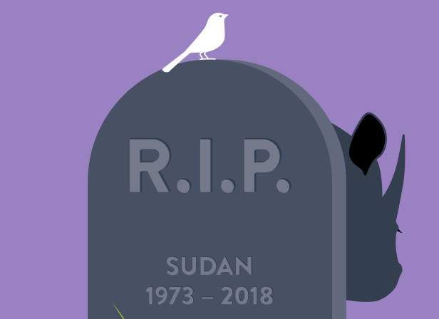 Endangered_Rhino_Sudan.jpg