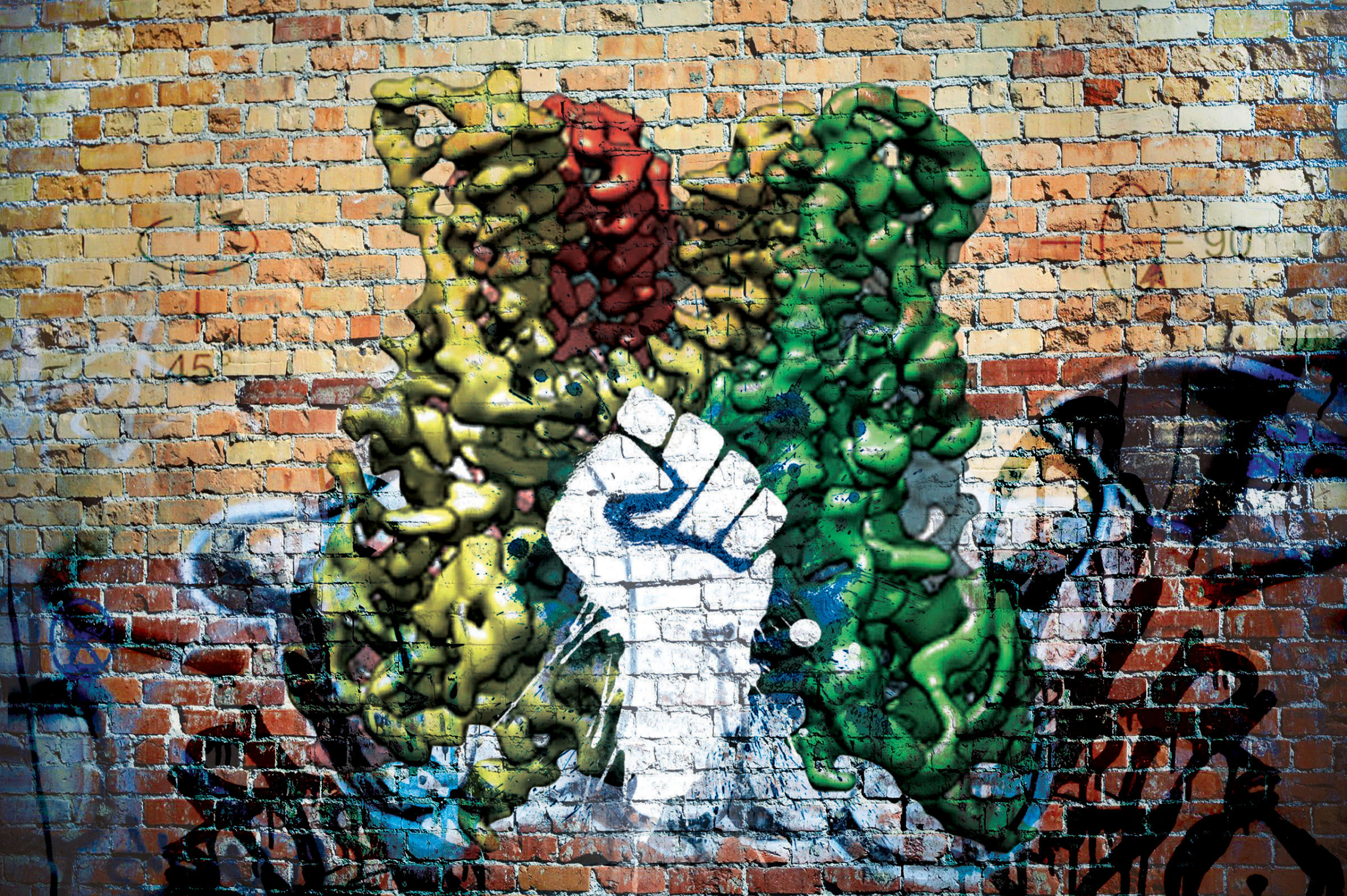 Revolutionary Imaging Graffiti Nature