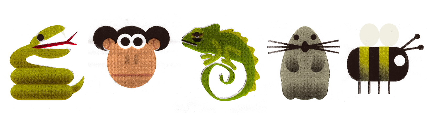 Monkey and Chameleon