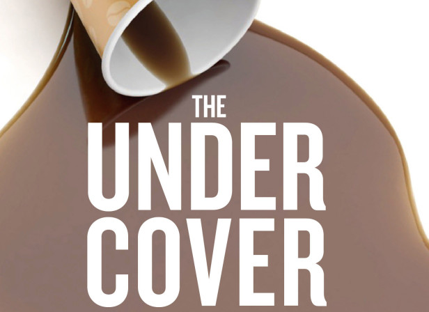 The Under Cover Economist - Tim Harford Cover