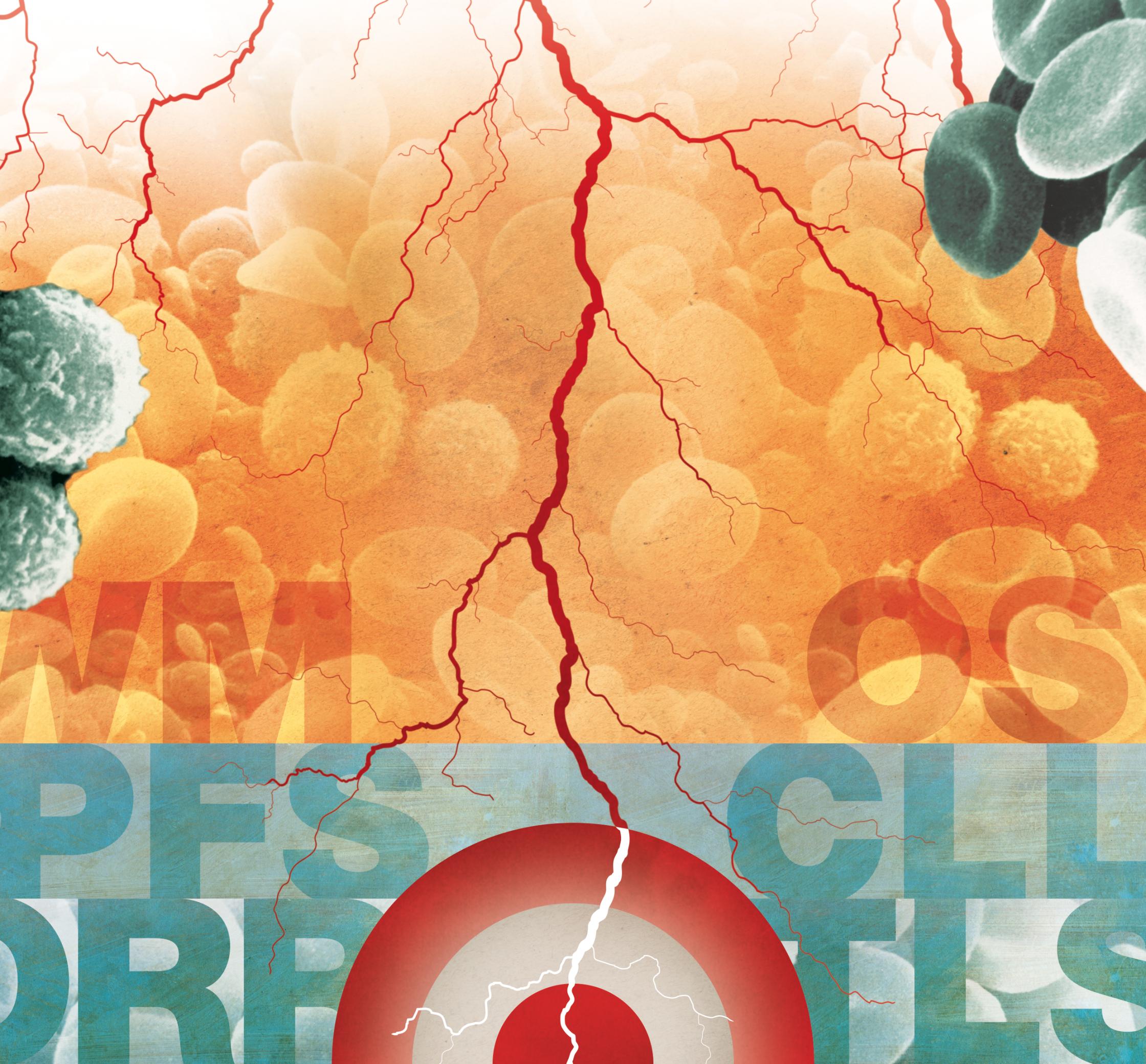 lancetoncology_BLOODCANCERS_3.jpg