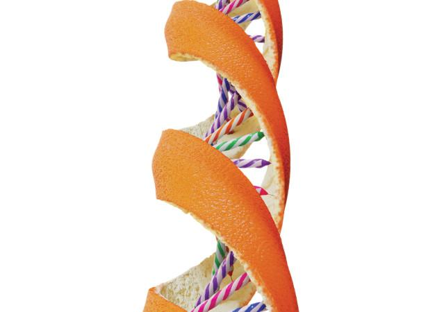 pcrowther_Orange_DNA_CMYK.jpg