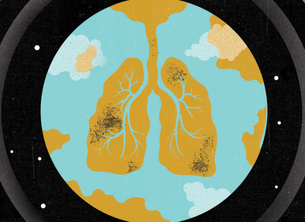 Lungs / Nature Magazine