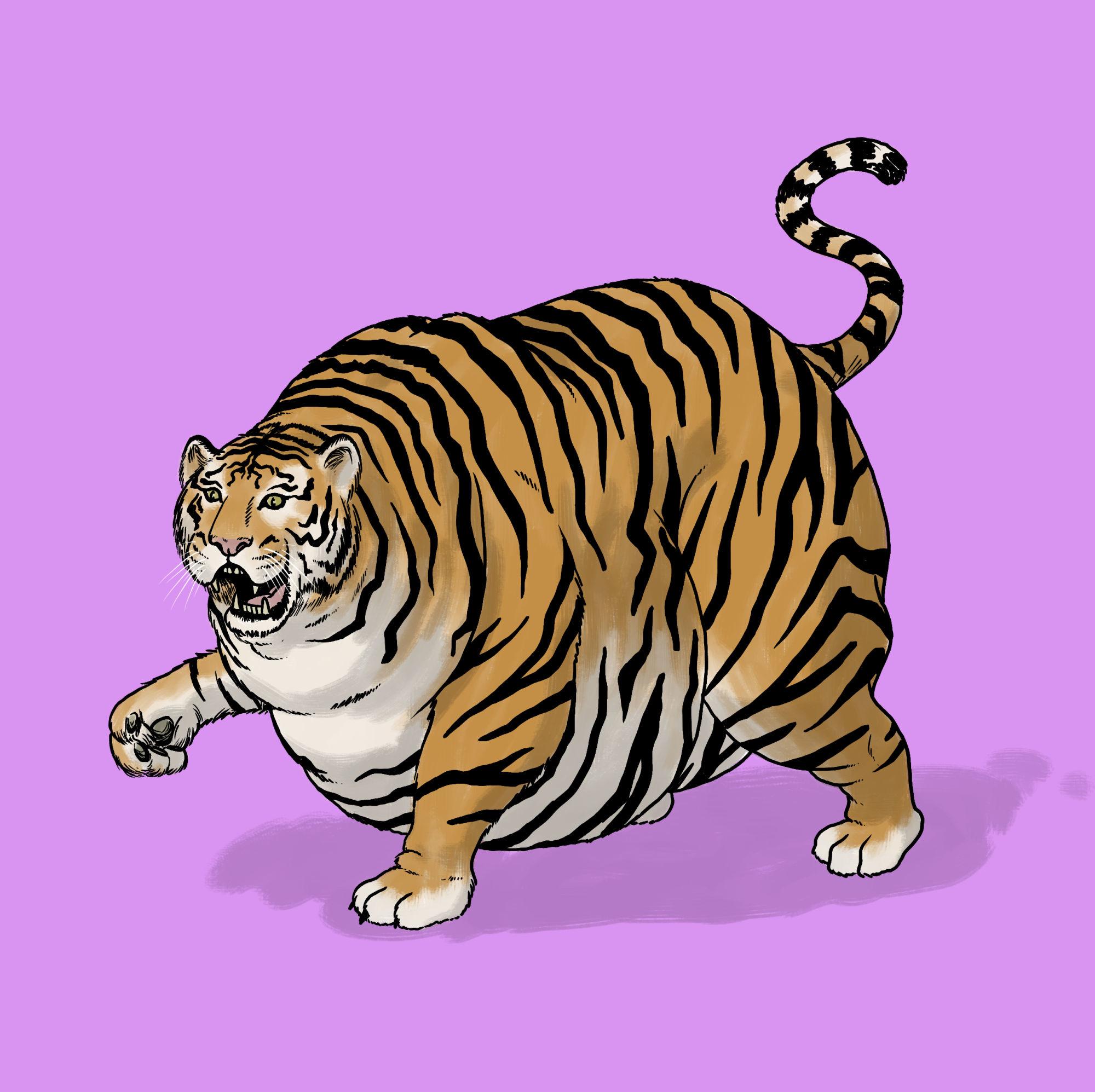 Personal-Fat_Tiger.jpg