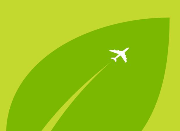 IATA Annual Report Environment