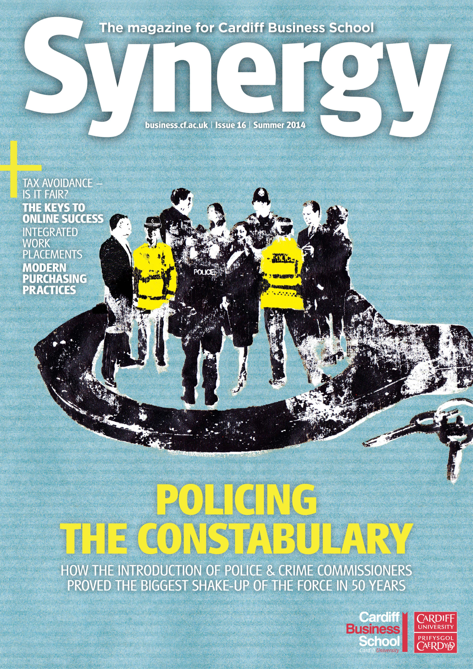 Policing the Constabulary Synergy