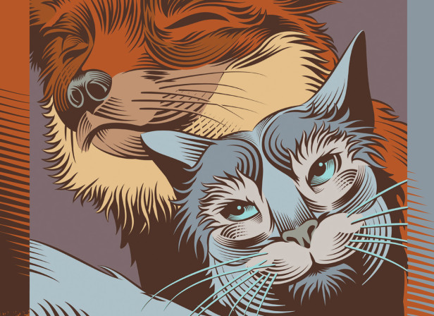 The Fox and The Cat / Grimm's Fairy Tales