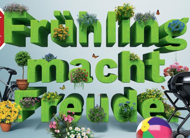 B+H WHM Fruehling F12 d X.jpg
