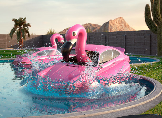 flamingo_splash.jpg
