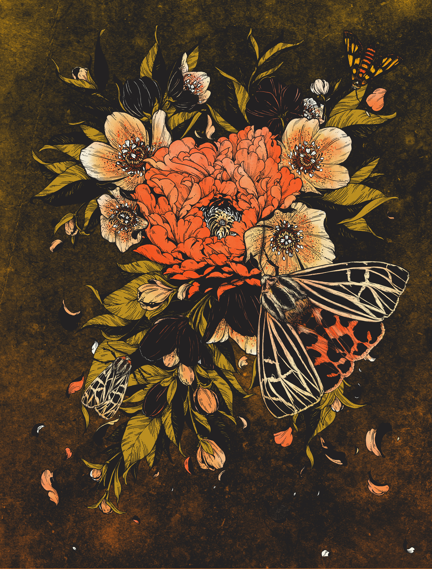 Ray LaMontagne - Bloom Lepis Art Print - Erica Williams.jpg