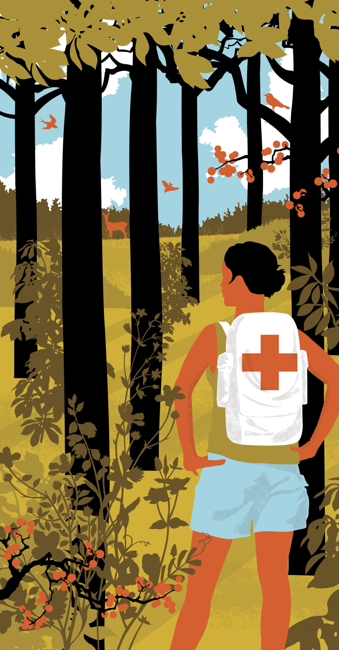 First Aid In The Woods