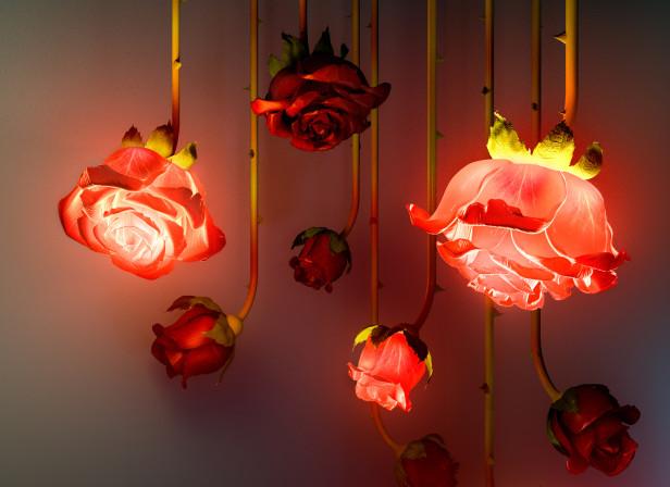 Final rose cover just image.jpg