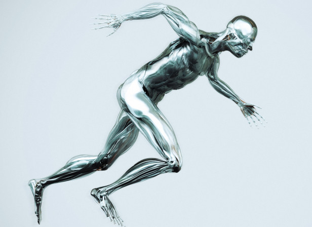Anatomy Runner / Mens Health