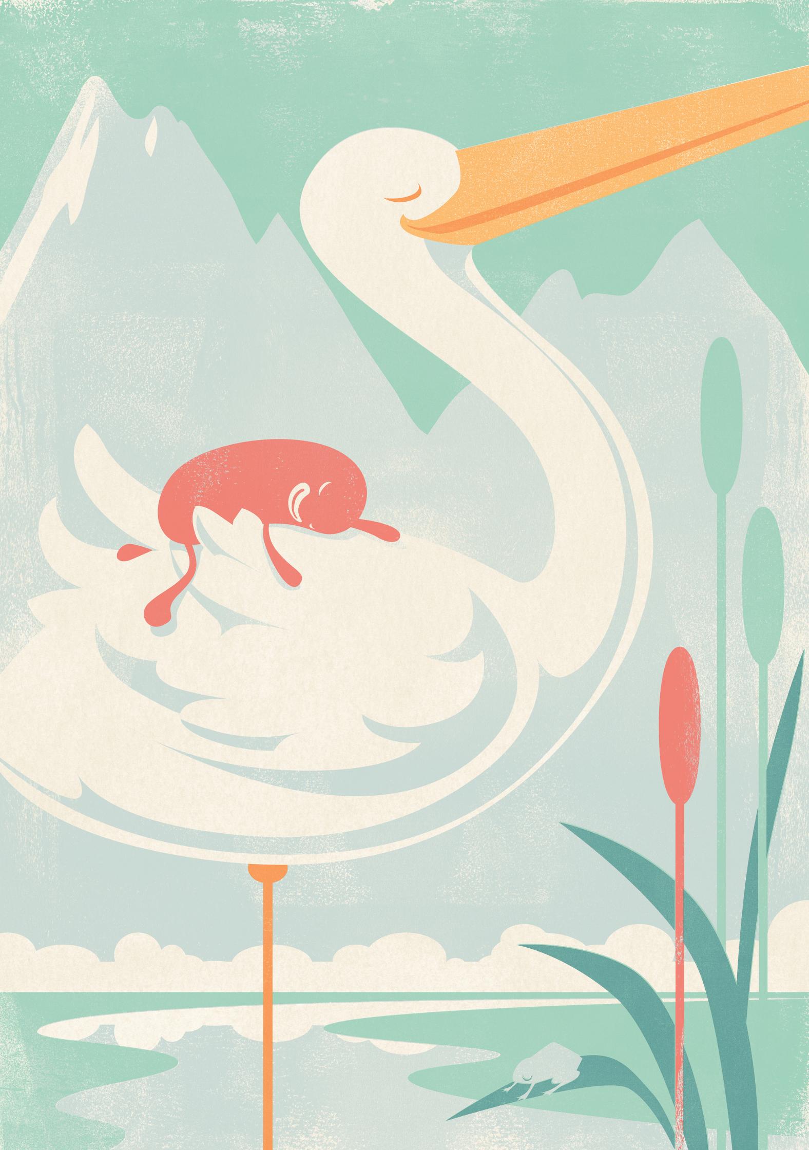 SlumberBean Stork SHP2.jpg