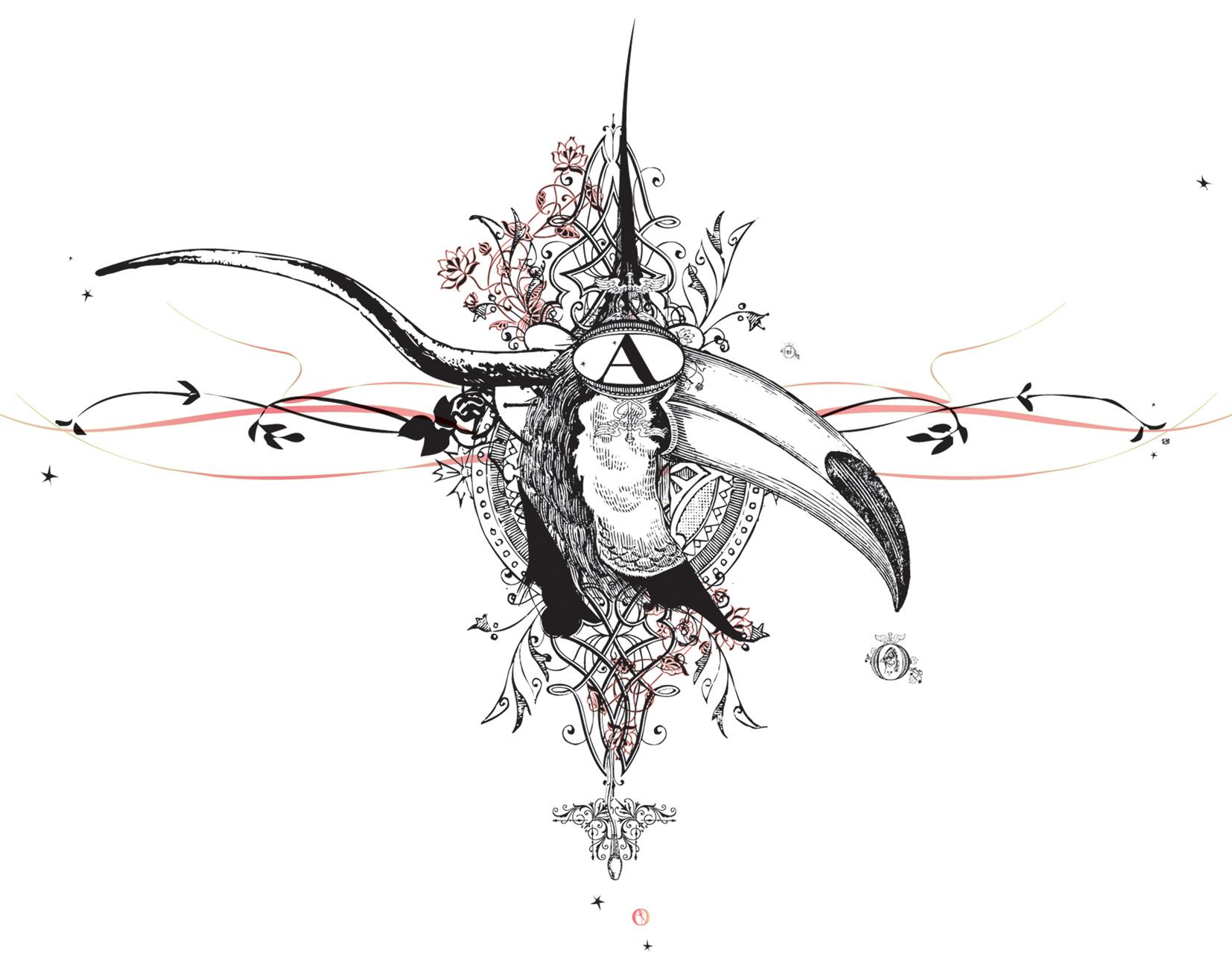 NOA Bird