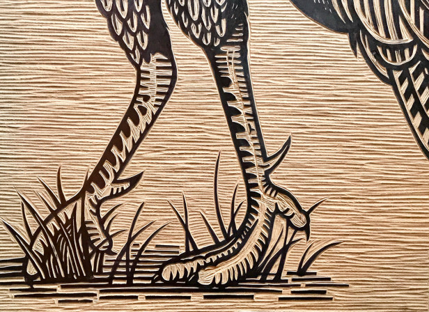 WildTurkey-Woodcut.jpg