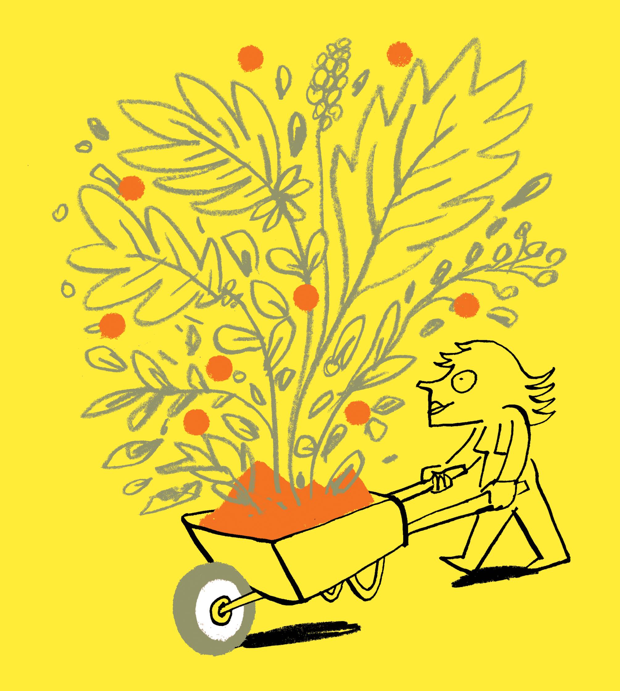 Streich-businesses-organic-gardening.jpg