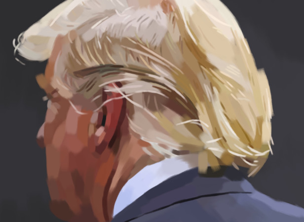'Trump_Hair'_iPad.jpg
