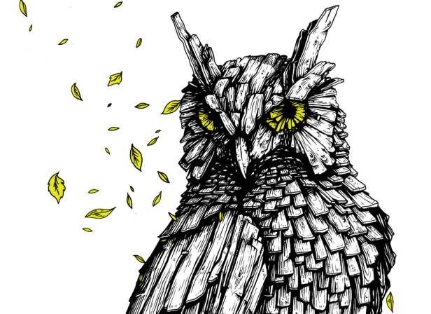 Gary The Owl