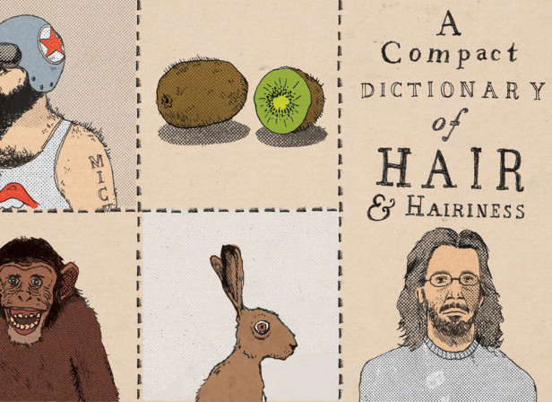 A Compact Dictionary Of Hair