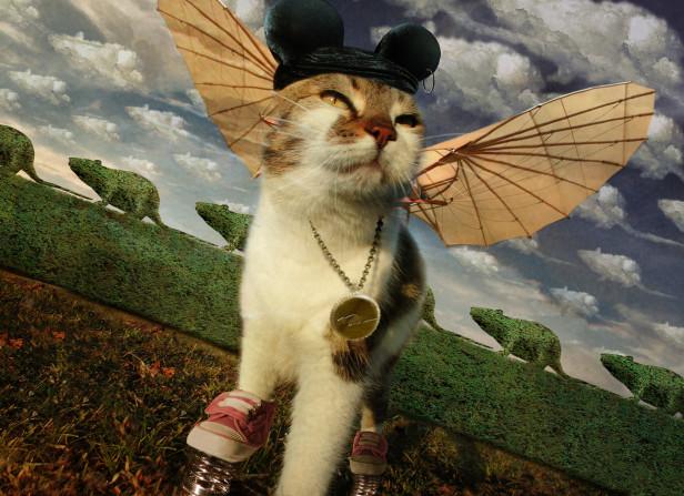Creative Cat / The Recruitment People