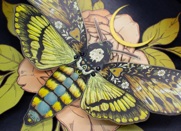Stipple Pop - Deaths Head Hawkmoth Shadowbox - Erica Williams IV.jpg