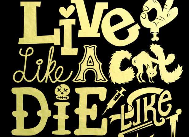LIVELIKEACAT.jpg