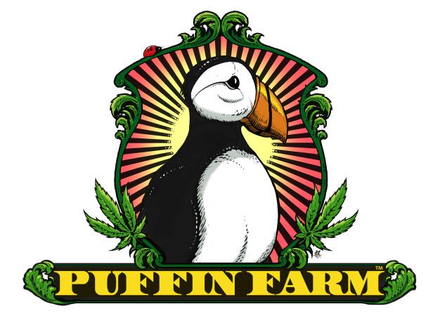 36-puffin.jpg
