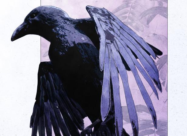 2019_march_raven.jpg