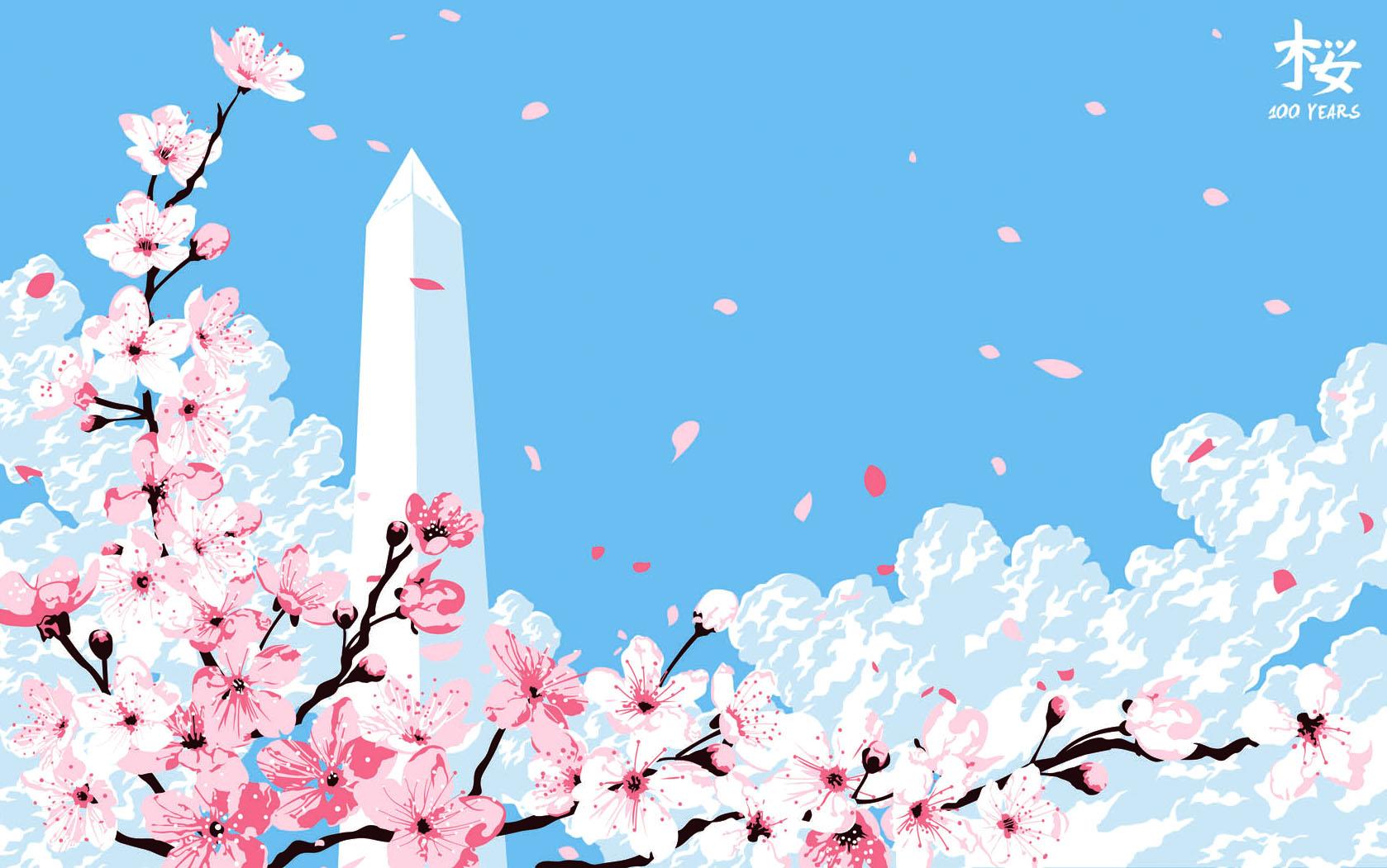 Cherry Blossom Sakura