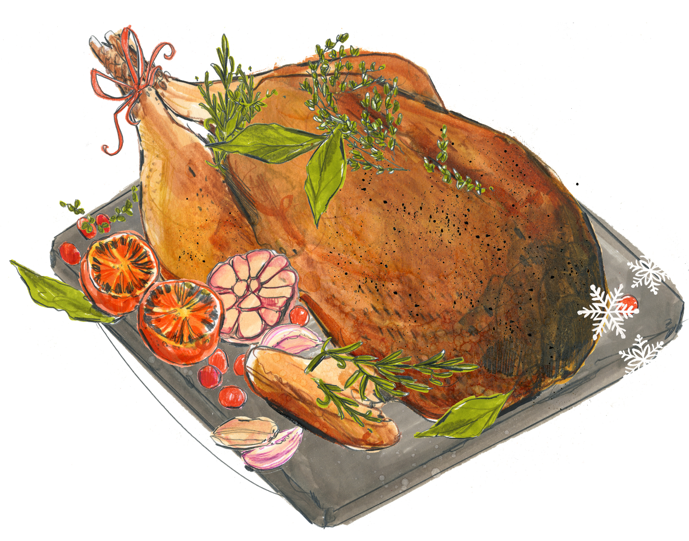 Ocado Turkey illustration.jpg