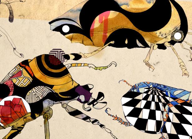 Dazzle Beetles / Amelia's Magazine