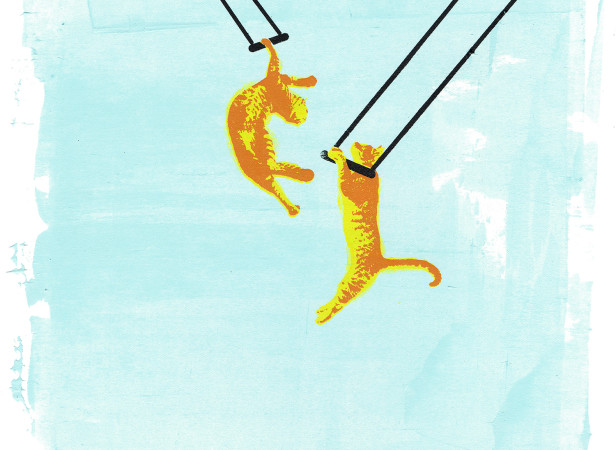 roomzzz_room_to_swing_a_cat_trapeze_screenprint_katie_edwards_illustration.jpg