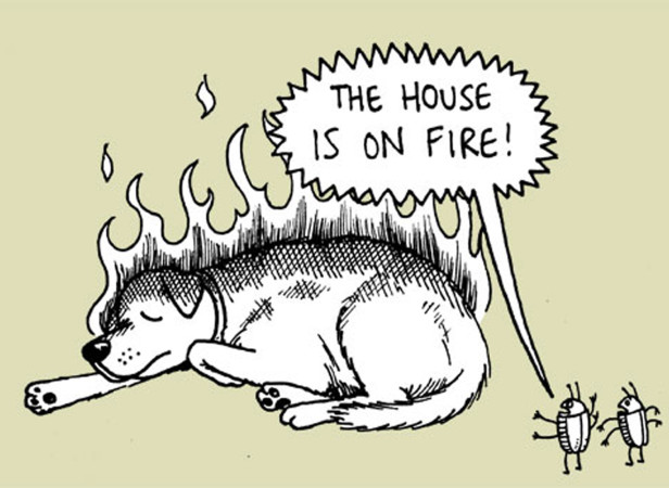 The House Is On Fire!