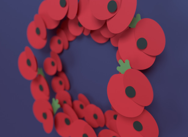 Remembrance_day_RadioTimes_detail.jpg