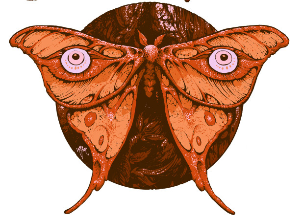 38-moth.jpg