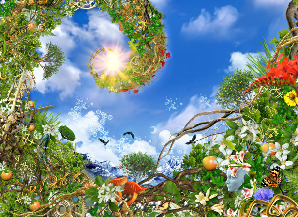 Fibonacci Nature