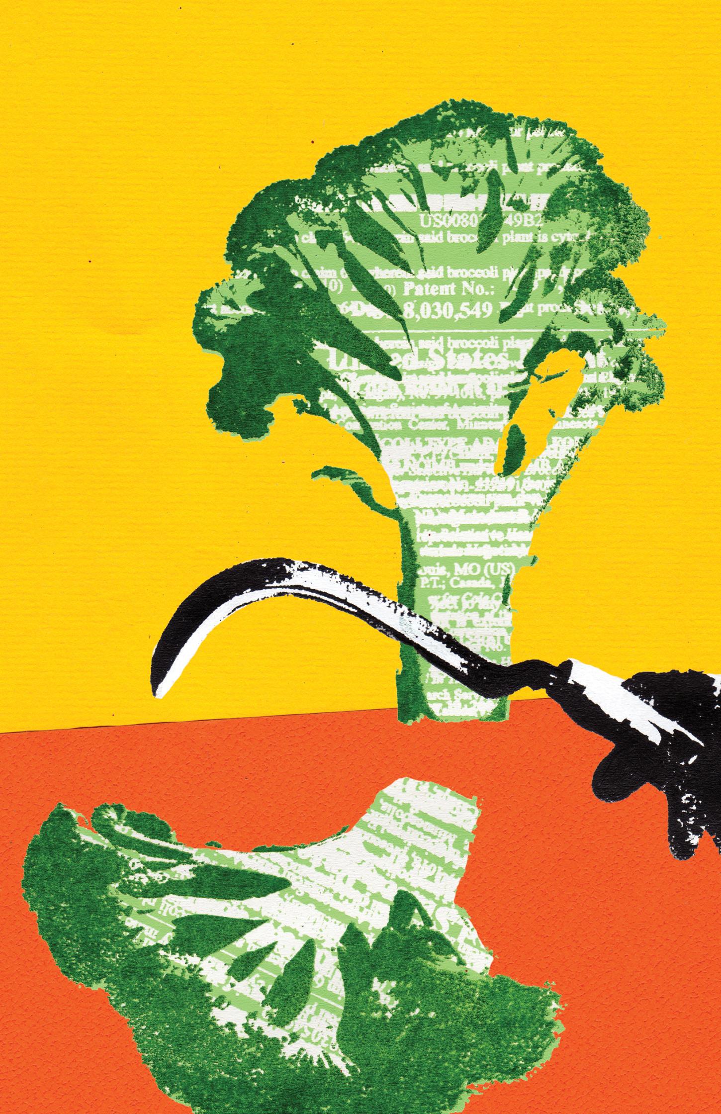 Linux for Lettuce / Virginia Quarterly Review