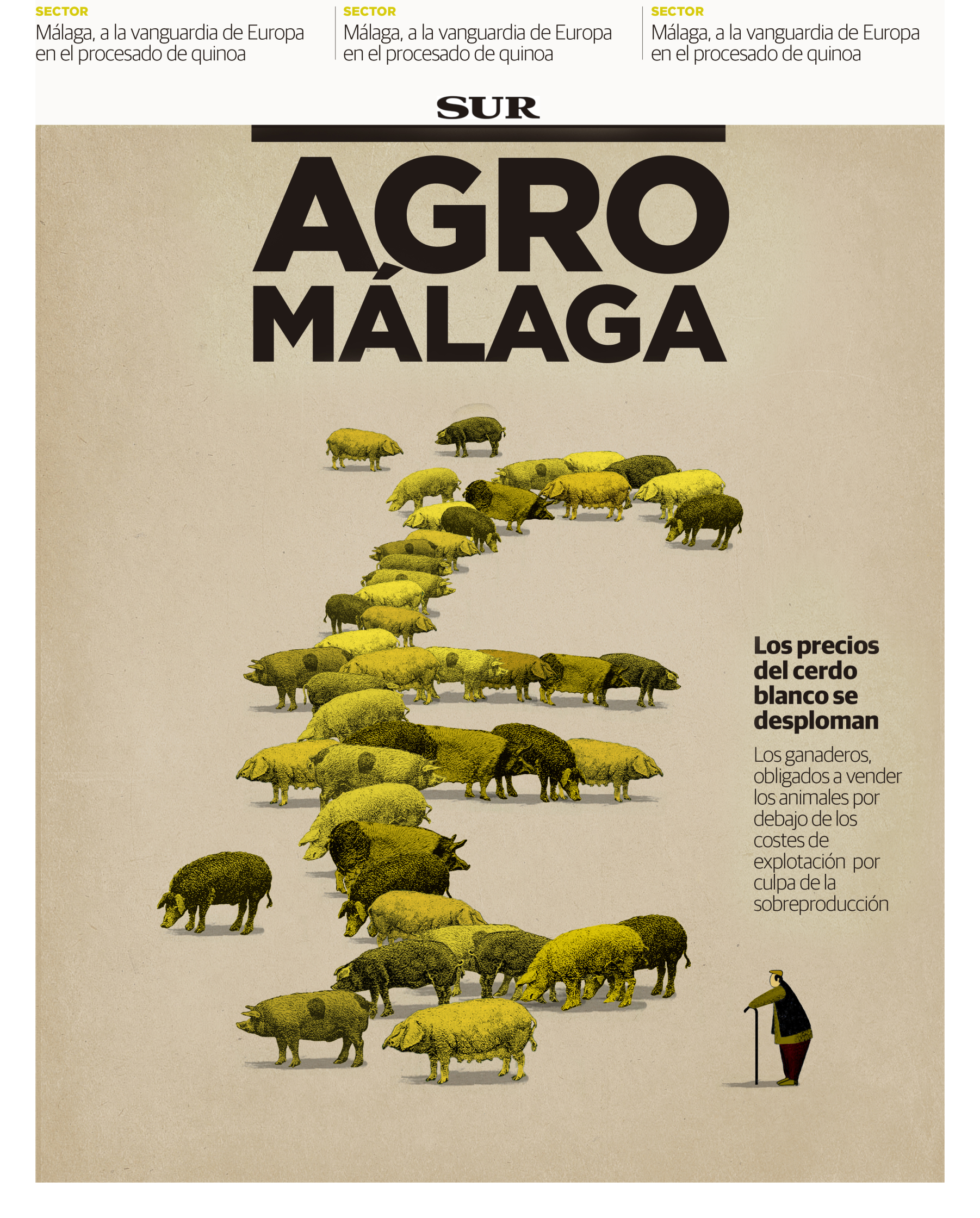 Diario Sur cover.jpg