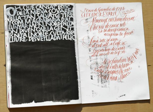 OMG - Oriol Miró i Genovart - Espriu_DSC0135 bx.jpg