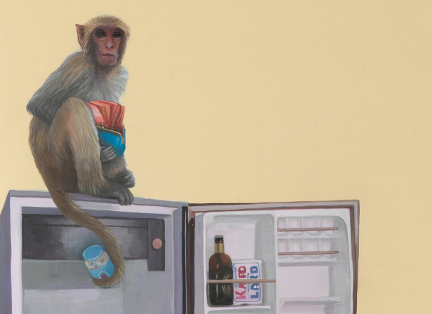 Monkey on the Fridge India Jack Magazine